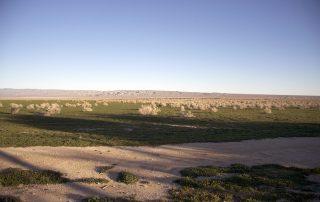 Wanderlust - High Desert